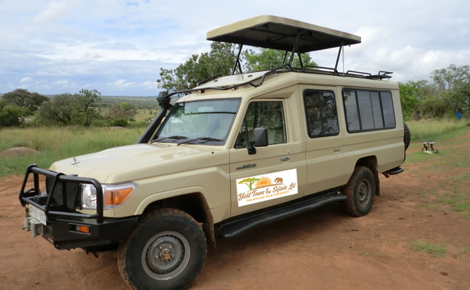 about-yield-tours-safaris-ltd